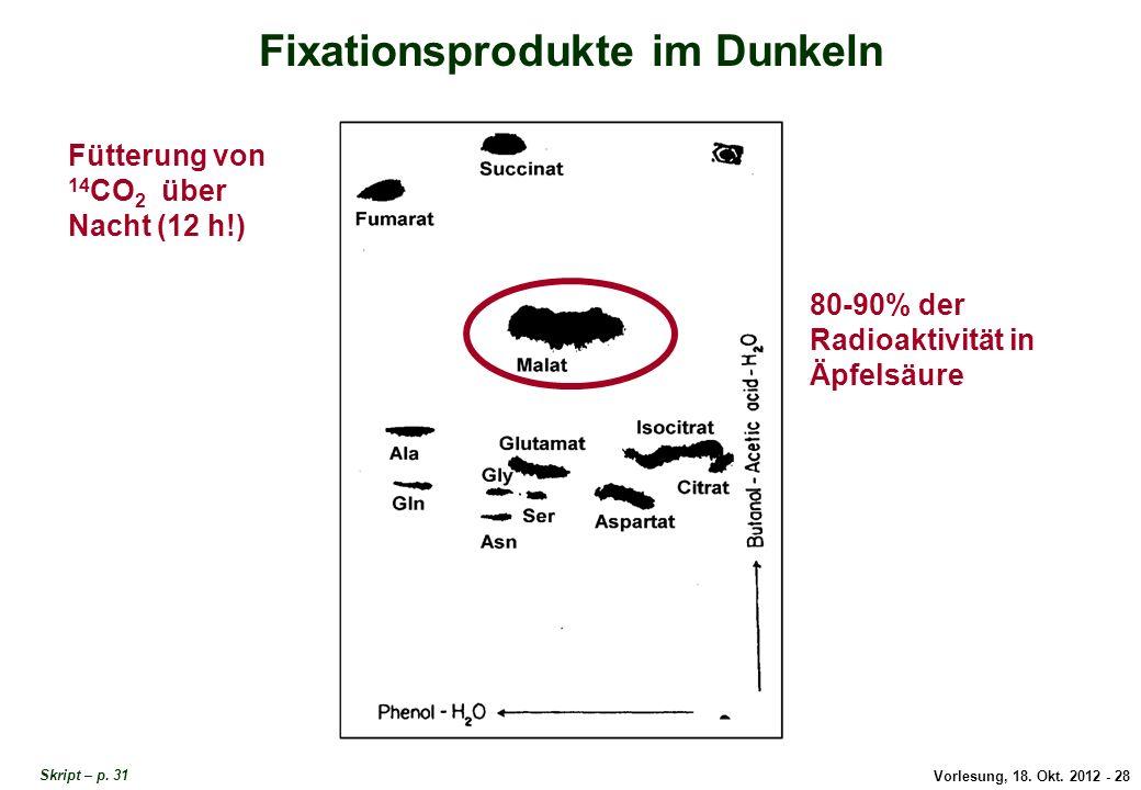 Vorlesung, 18. Okt. 2012 - 28 Fixationsprodukte im Dunkeln Fütterung von 14 CO 2 über Nacht (12 h!) 80-90% der Radioaktivität in Äpfelsäure Fixationsp