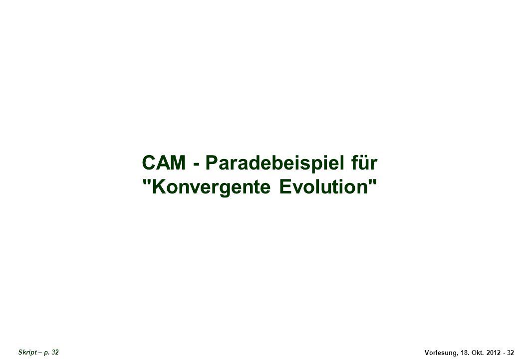 Vorlesung, 18. Okt. 2012 - 32 CAM - Paradebeispiel für