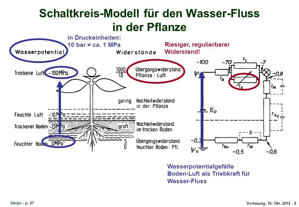 Vorlesung, 18. Okt. 2012 - 8 Schaltkreis-Modell für den Wasser-Fluss in der Pflanze in Druckeinheiten: 10 bar = ca. 1 MPa Wasserpotentialgefälle Boden