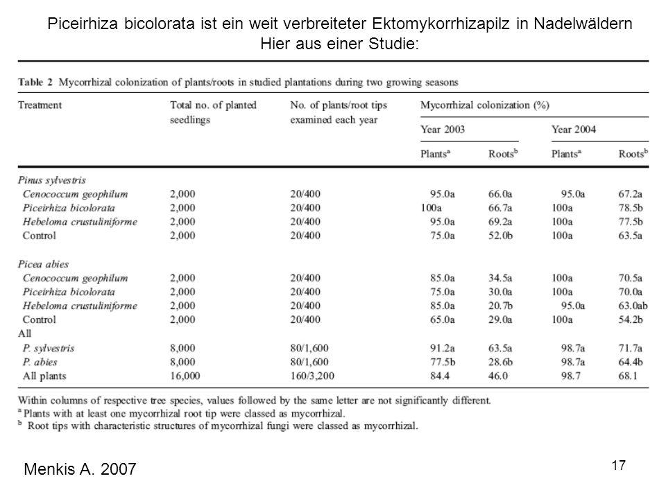 17 Menkis A. 2007 Piceirhiza bicolorata ist ein weit verbreiteter Ektomykorrhizapilz in Nadelwäldern Hier aus einer Studie: