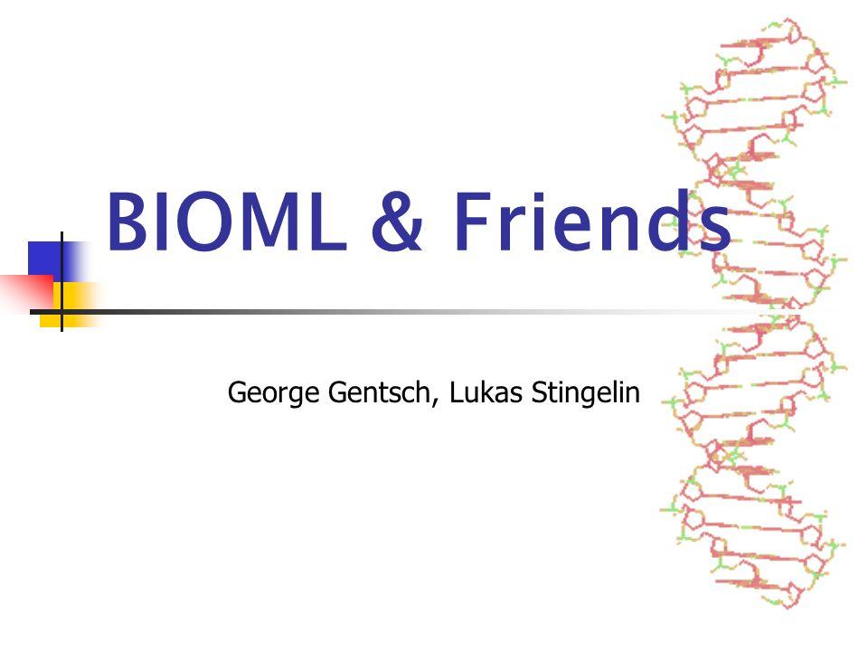 5. Juni 2002 Seminar XML-Technologien/BIOML & Friends12 Translation