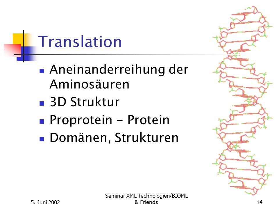 5. Juni 2002 Seminar XML-Technologien/BIOML & Friends14 Translation Aneinanderreihung der Aminosäuren 3D Struktur Proprotein - Protein Domänen, Strukt