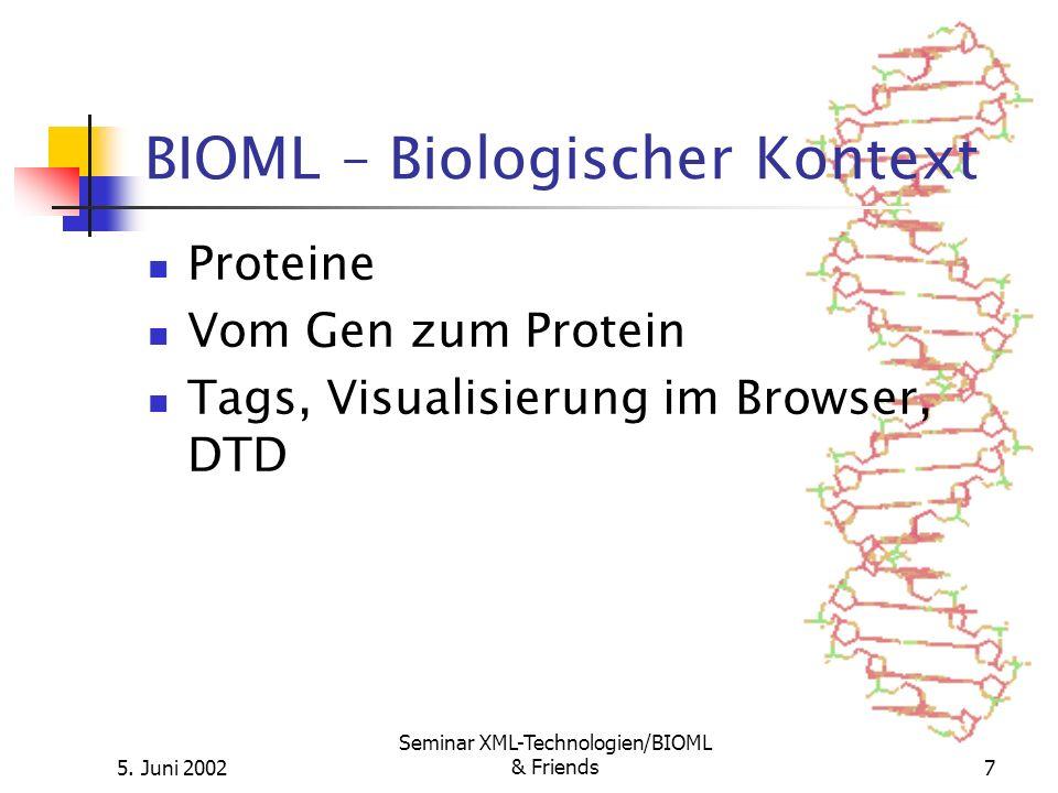 5. Juni 2002 Seminar XML-Technologien/BIOML & Friends7 BIOML – Biologischer Kontext Proteine Vom Gen zum Protein Tags, Visualisierung im Browser, DTD