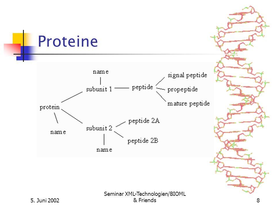 5. Juni 2002 Seminar XML-Technologien/BIOML & Friends8 Proteine