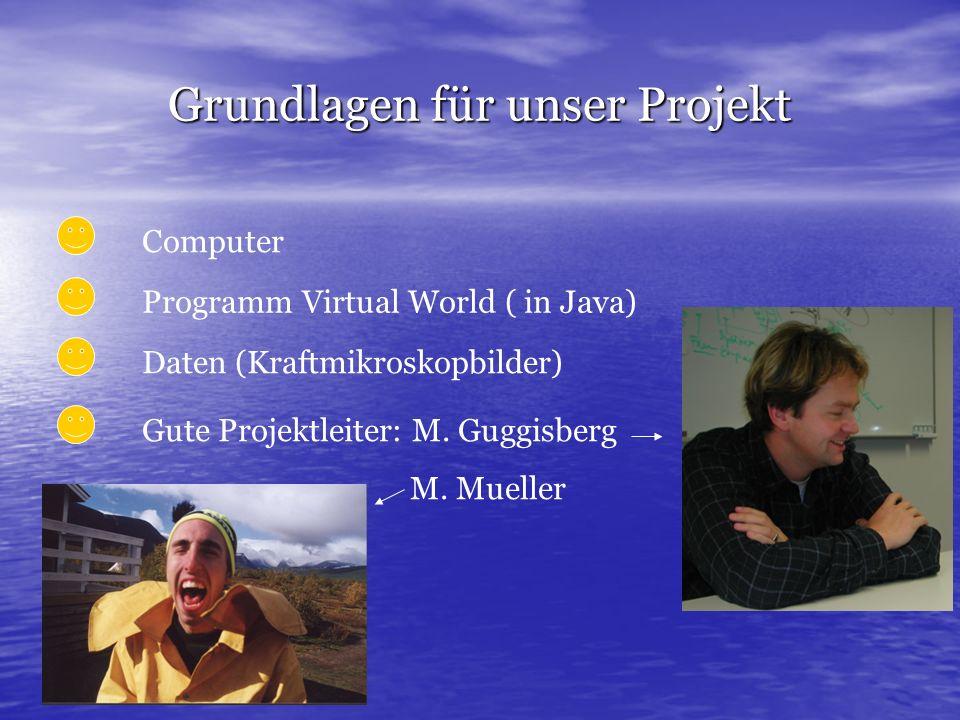 Grundlagen für unser Projekt Computer Programm Virtual World ( in Java) Daten (Kraftmikroskopbilder) Gute Projektleiter: M. Guggisberg M. Mueller