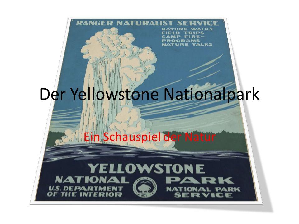 Der Yellowstone Nationalpark Ein Schauspiel der Natur