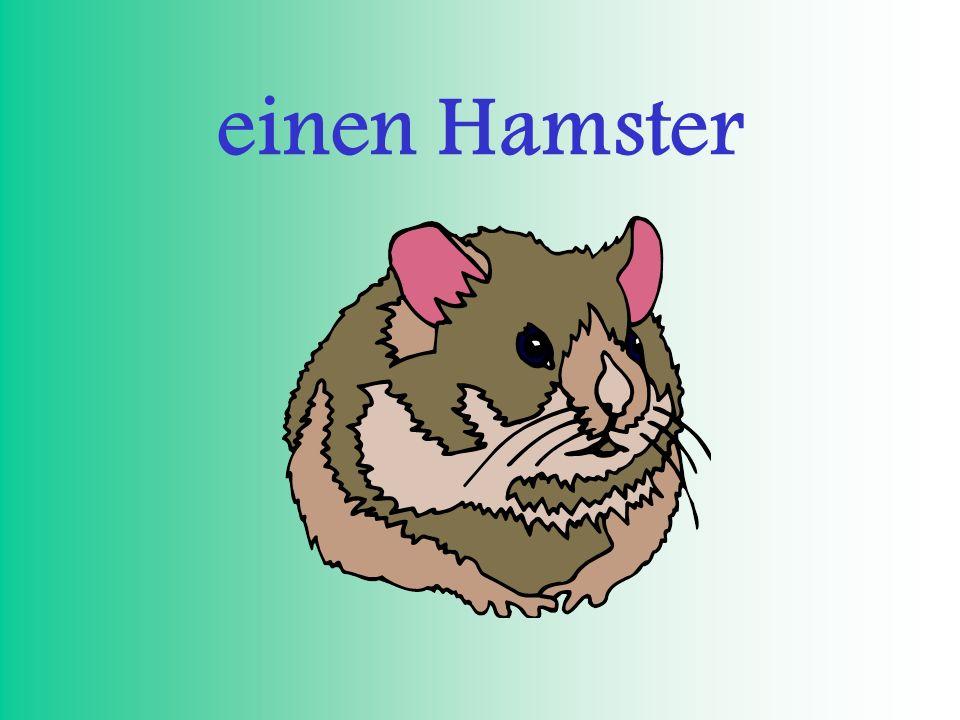 einen Hamster