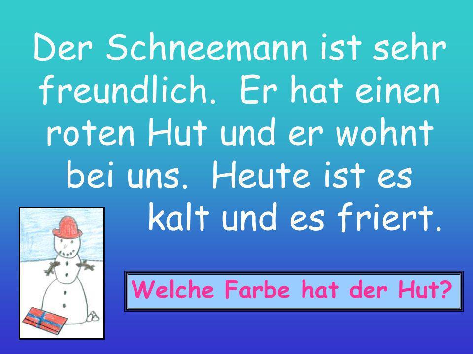 Der Schneemann heiβt Heinrich.Er wohnt im Garten.