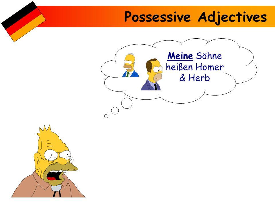 Possessive Adjectives Mein Bruder heißt Herb