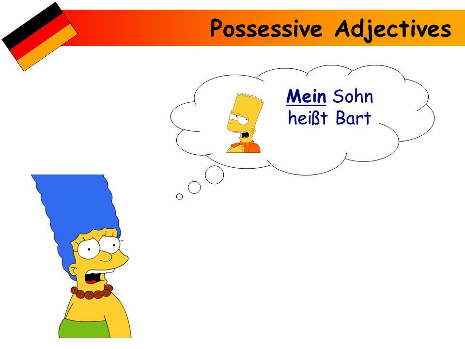Possessive Adjectives Mein Sohn heißt Bart