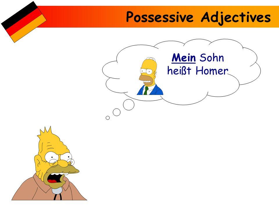 Possessive Adjectives Mein Sohn heißt Homer