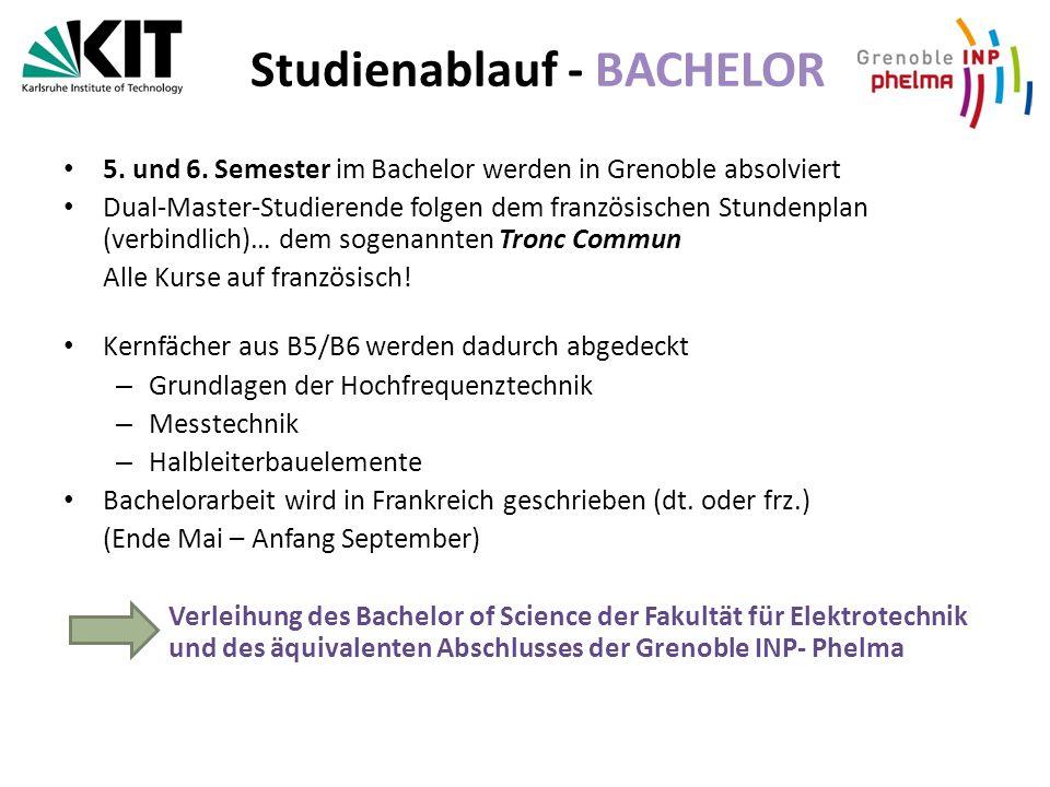 Studienablauf - BACHELOR 5.und 6.