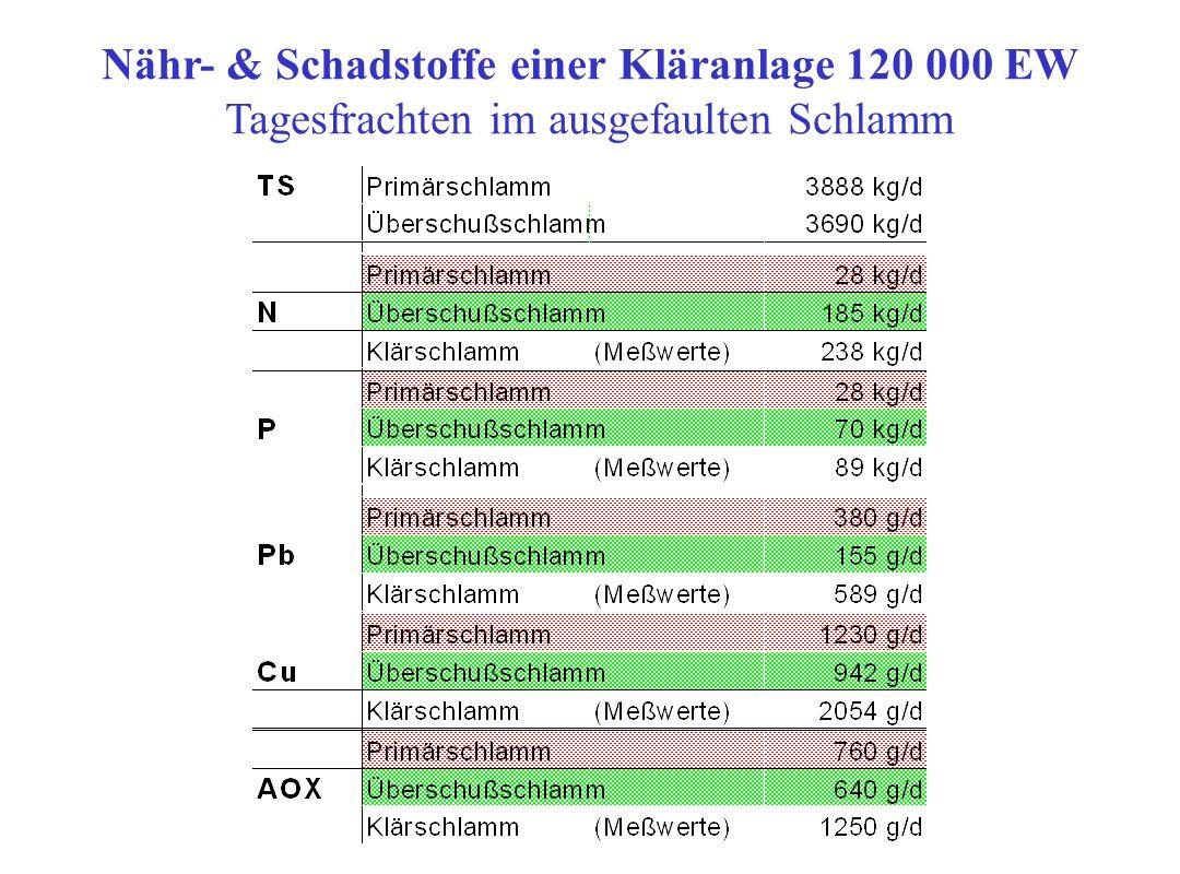 Stoffströme einer mech.- biol. Kläranlage 120 000 EW Adsorbierbare organische Halogene