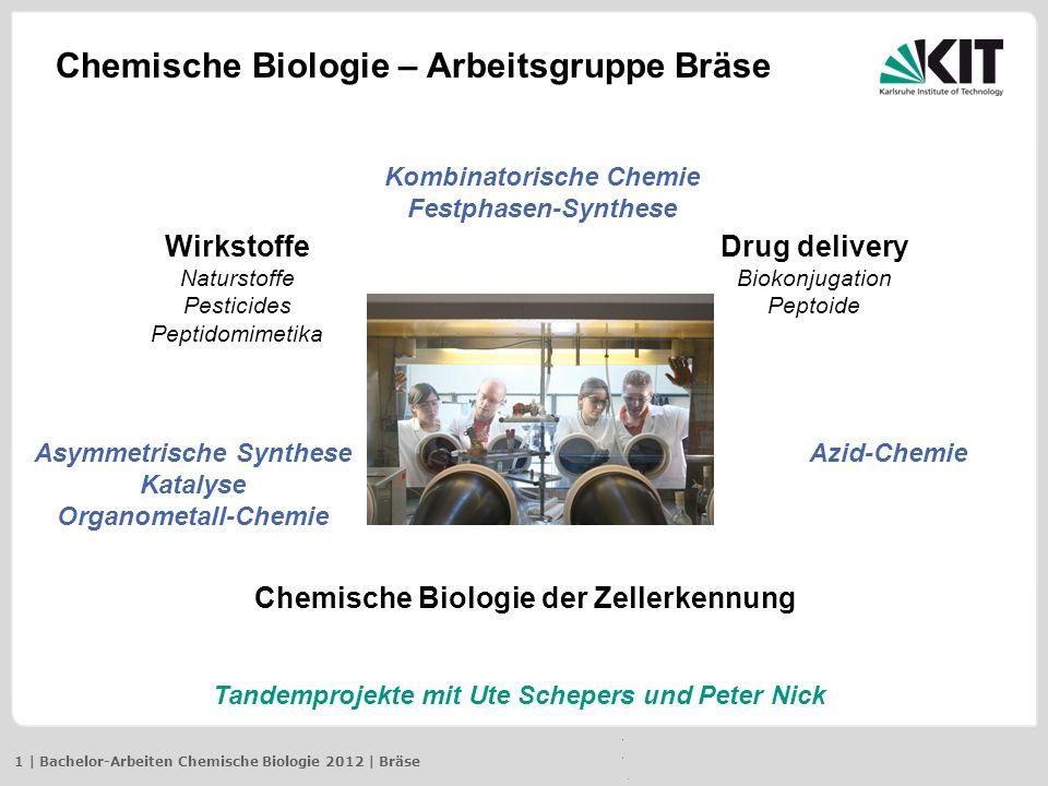 Kombinatorische Chemie Festphasen-Synthese Asymmetrische Synthese Katalyse Organometall-Chemie Azid-Chemie Wirkstoffe Naturstoffe Pesticides Peptidomi