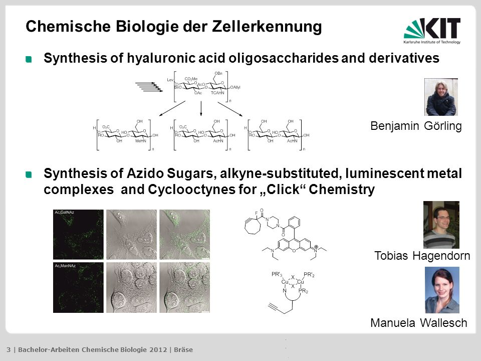 3 | Bachelor-Arbeiten Chemische Biologie 2012 | Bräse Chemische Biologie der Zellerkennung Synthesis of hyaluronic acid oligosaccharides and derivatives Synthesis of Azido Sugars, alkyne-substituted, luminescent metal complexes and Cyclooctynes for Click Chemistry Tobias Hagendorn Benjamin Görling Manuela Wallesch