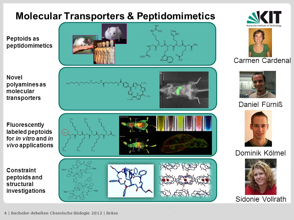 Combinatorial Chemistry Platform Heterozyklen-Synthese unter Verwendung von (immobilisierten) Dithioverbindungen 5 | Bachelor-Arbeiten Chemische Biologie 2012 | Bräse