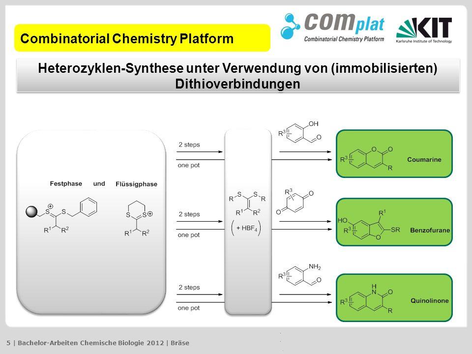 Combinatorial Chemistry Platform Heterozyklen-Synthese unter Verwendung von (immobilisierten) Dithioverbindungen 5 | Bachelor-Arbeiten Chemische Biolo