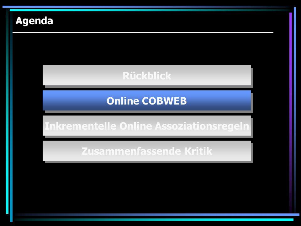 Agenda Online COBWEB Inkrementelle Online Assoziationsregeln Zusammenfassende Kritik Rückblick