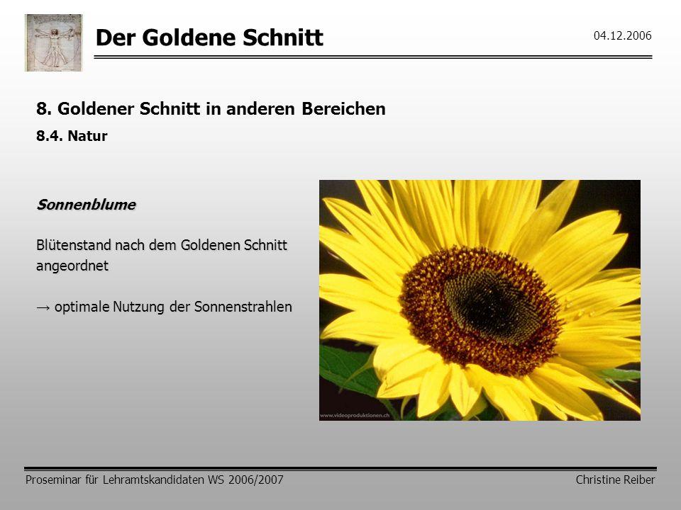 Der Goldene Schnitt Proseminar für Lehramtskandidaten WS 2006/2007 Christine Reiber 04.12.2006 8.