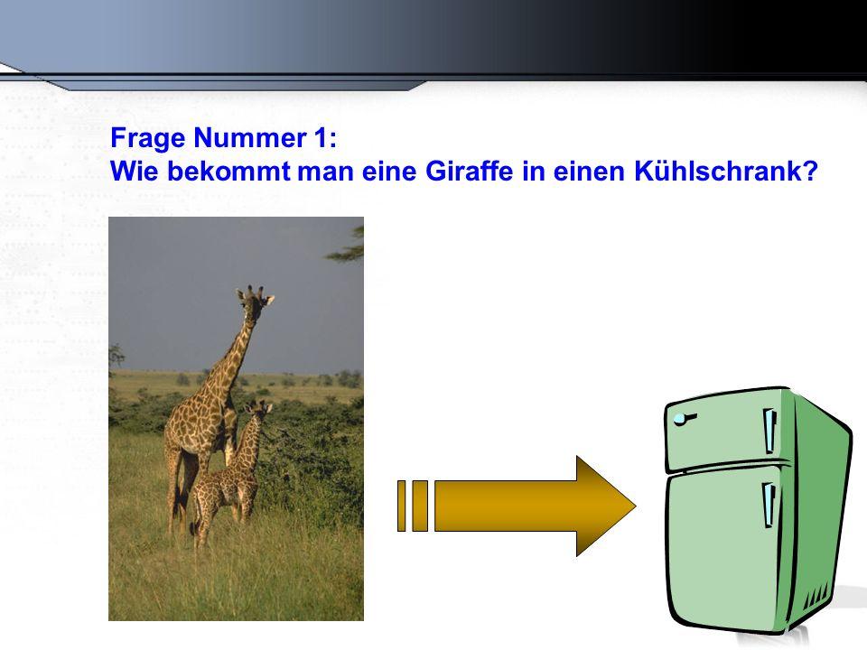 Die richtige Antwort lautet: Man öffnet den Kühlschrank, stellt die Giraffe hinein und schließt die Tür.