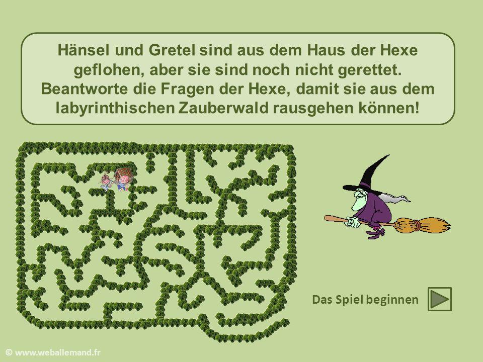 Hänsel und Gretel sind aus dem Haus der Hexe geflohen, aber sie sind noch nicht gerettet.