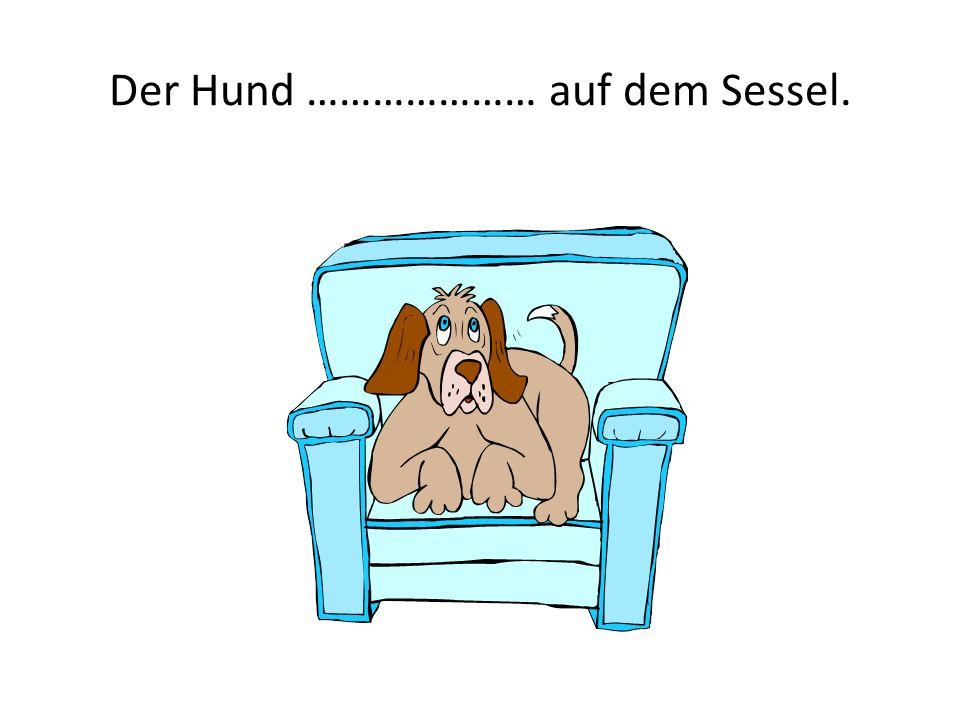 Der Hund ………………… auf dem Sessel.