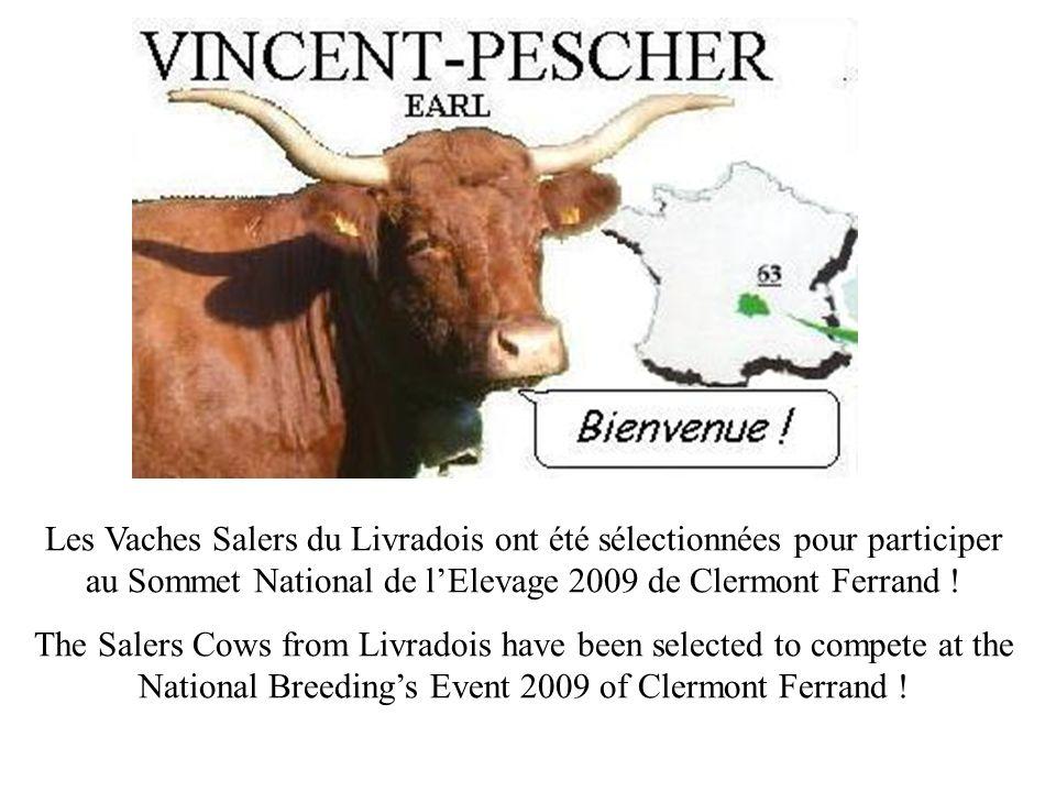 Les Vaches Salers du Livradois ont été sélectionnées pour participer au Sommet National de lElevage 2009 de Clermont Ferrand .