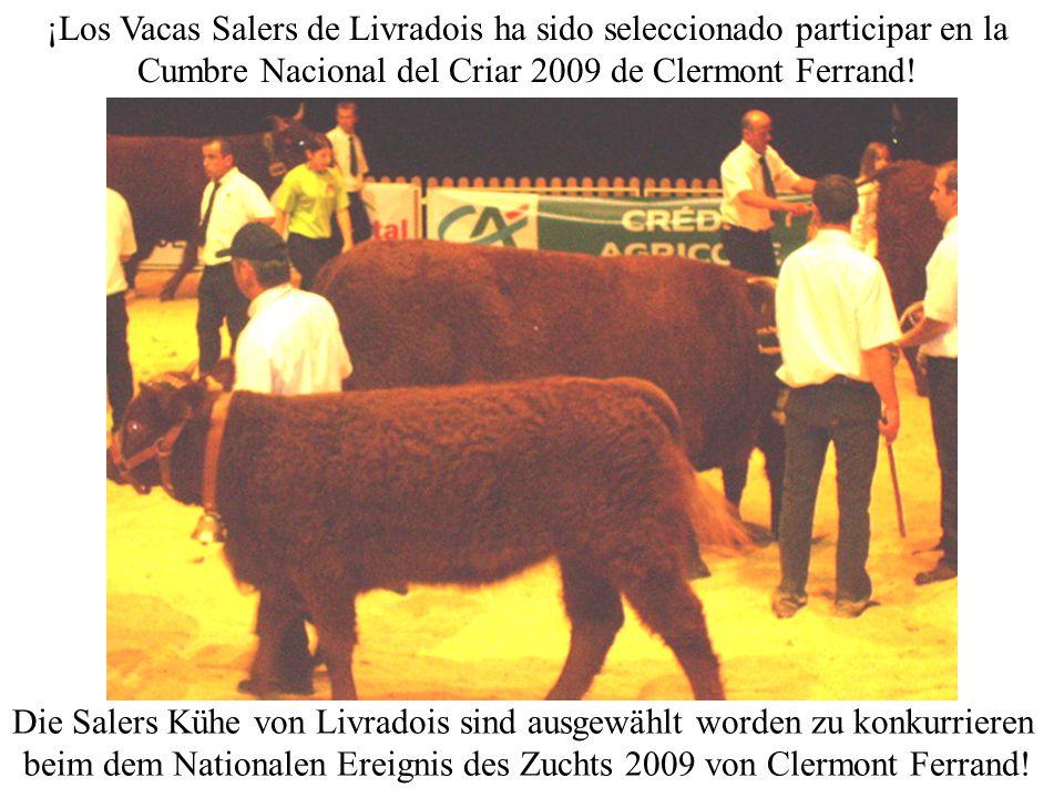 ¡Los Vacas Salers de Livradois ha sido seleccionado participar en la Cumbre Nacional del Criar 2009 de Clermont Ferrand.