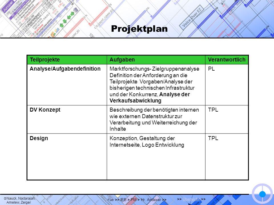 Nauck, Nadarajah, Amelew, Zeiger >> Übersicht >>Übersicht Fuer >> IEB > PM > Hr. Andexer >> Projektplan TeilprojekteAufgabenVerantwortlich Analyse/Auf