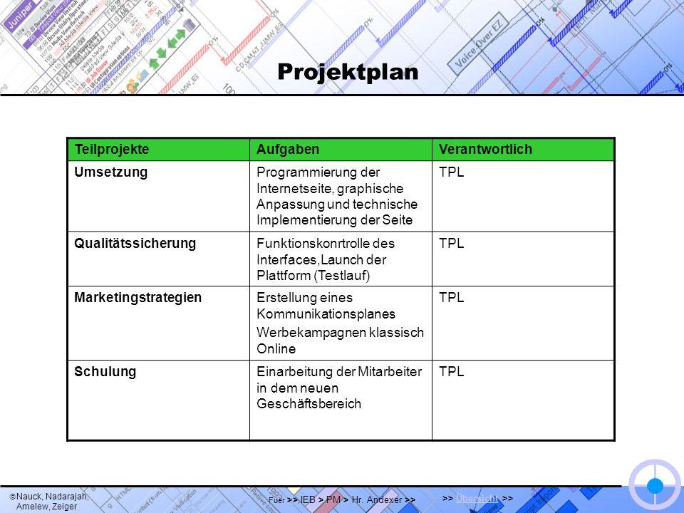 Nauck, Nadarajah, Amelew, Zeiger >> Übersicht >>Übersicht Fuer >> IEB > PM > Hr. Andexer >> Projektplan TeilprojekteAufgabenVerantwortlich UmsetzungPr