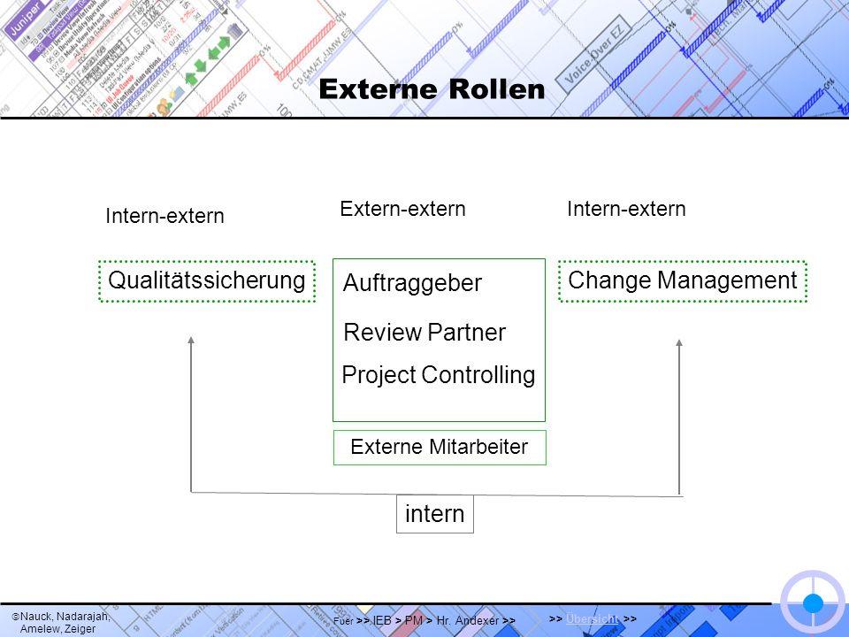 Nauck, Nadarajah, Amelew, Zeiger >> Übersicht >>Übersicht Fuer >> IEB > PM > Hr. Andexer >> Externe Rollen Auftraggeber Review Partner Project Control