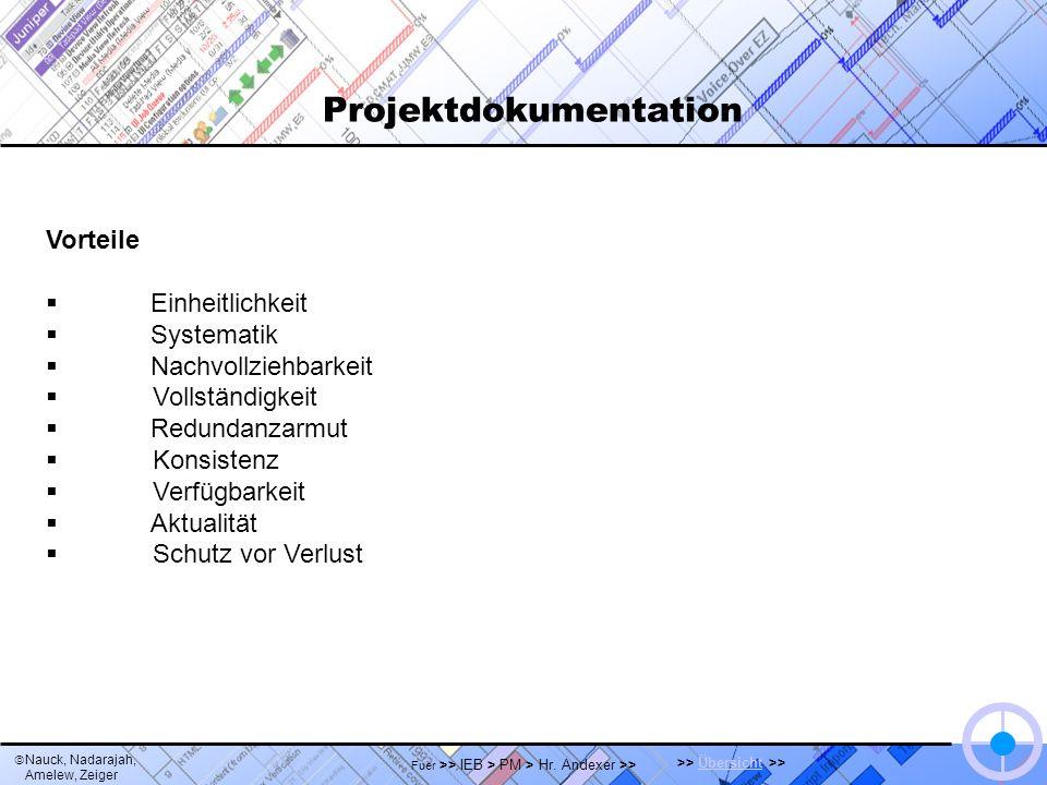 Nauck, Nadarajah, Amelew, Zeiger >> Übersicht >>Übersicht Fuer >> IEB > PM > Hr. Andexer >> Projektdokumentation Vorteile Einheitlichkeit Systematik N