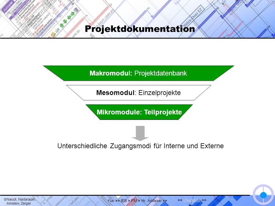 Nauck, Nadarajah, Amelew, Zeiger >> Übersicht >>Übersicht Fuer >> IEB > PM > Hr. Andexer >> Projektdokumentation Mesomodul: Einzelprojekte Mikromodule