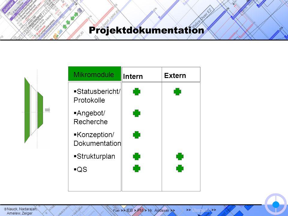 Nauck, Nadarajah, Amelew, Zeiger >> Übersicht >>Übersicht Fuer >> IEB > PM > Hr. Andexer >> Projektdokumentation Intern Extern Statusbericht/ Protokol