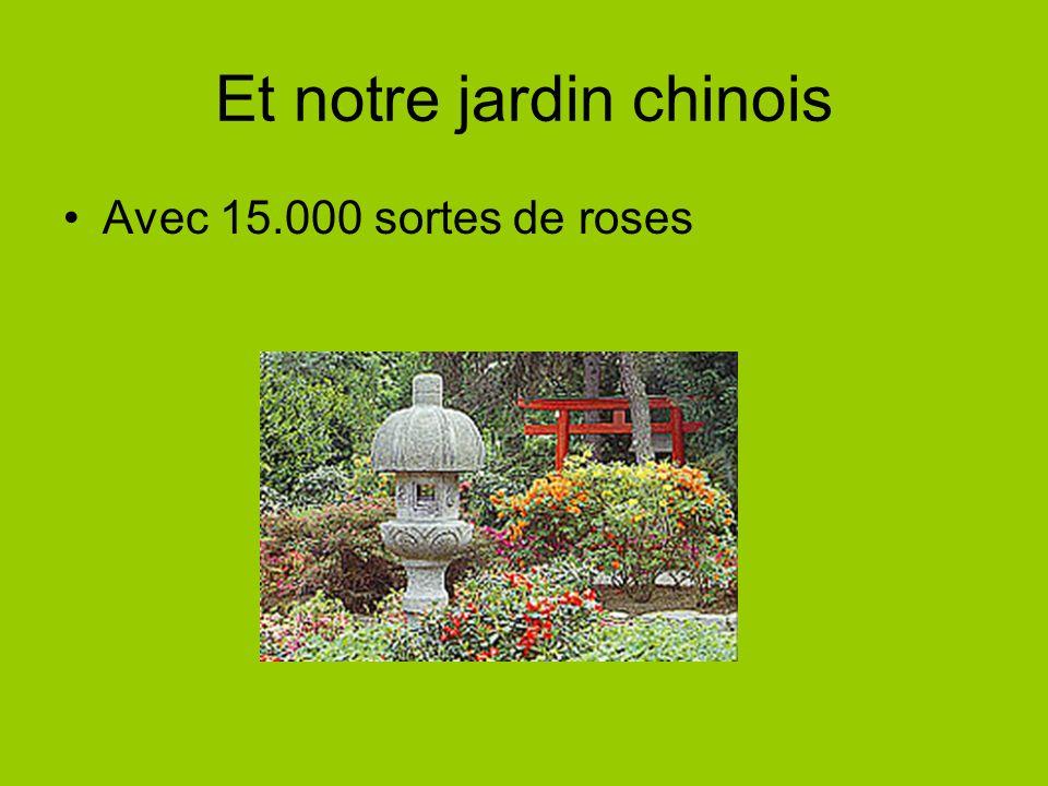 Et notre jardin chinois Avec 15.000 sortes de roses