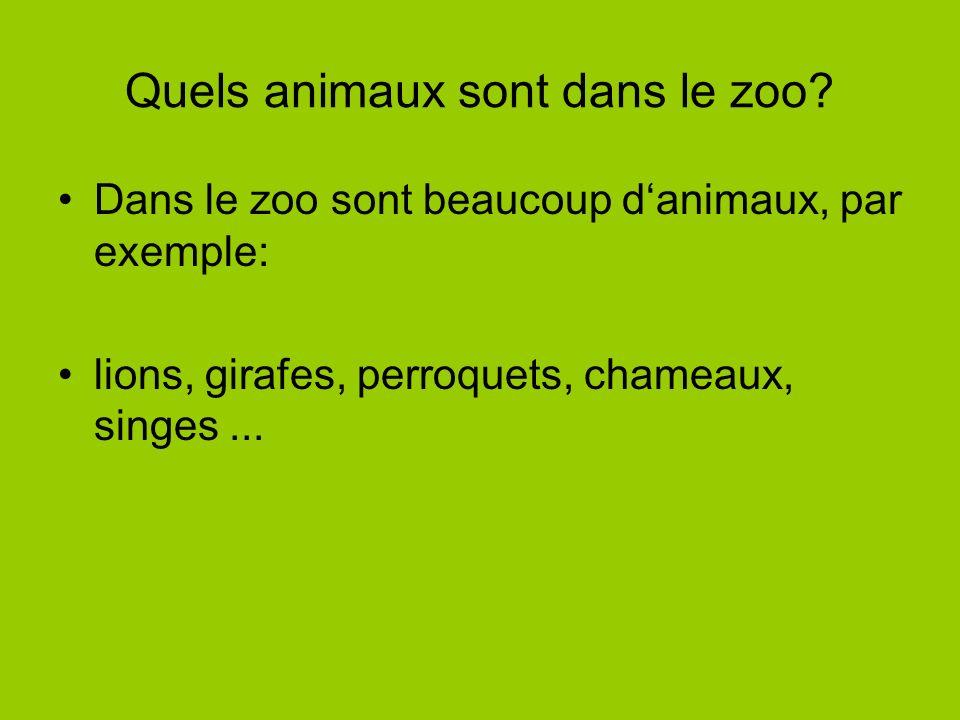 Quels animaux sont dans le zoo? Dans le zoo sont beaucoup danimaux, par exemple: lions, girafes, perroquets, chameaux, singes...