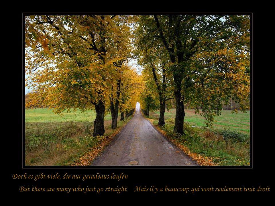 Mal ist links ein Pfad ~ mal wird einer nach rechts gehen Time is left a path ~ times will be one to the right Desfois un sentier vers la gagauche, un