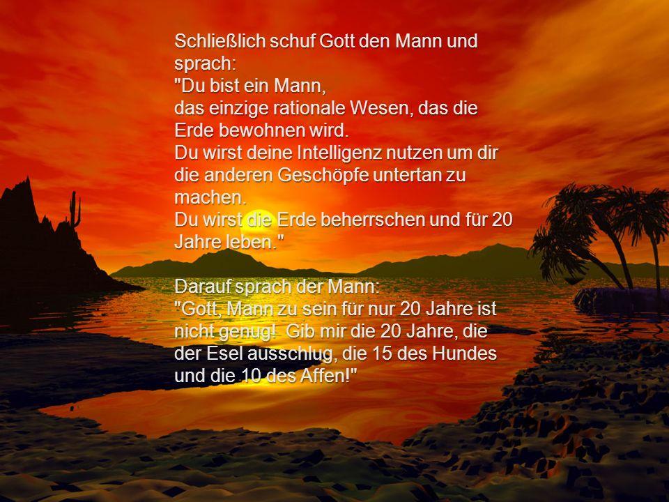 Schließlich schuf Gott den Mann und sprach: Du bist ein Mann, das einzige rationale Wesen, das die Erde bewohnen wird.