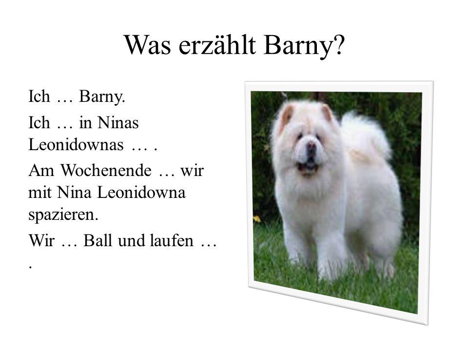 Was erzählt Barny. Ich … Barny. Ich … in Ninas Leonidownas ….