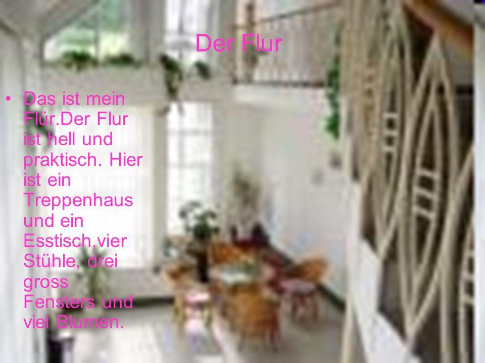 Das ist mein Flür.Der Flur ist hell und praktisch. Hier ist ein Treppenhaus und ein Esstisch,vier Stühle, drei gross Fensters und viel Blumen. Der Flu