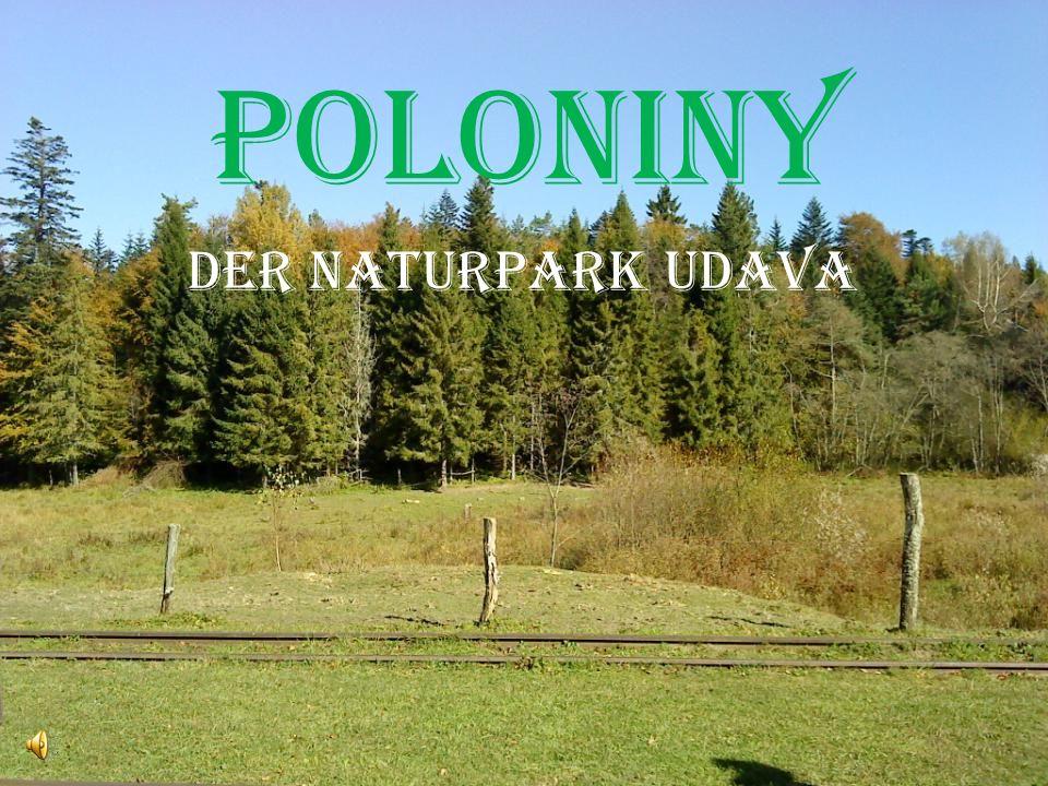 Poloniny Der Naturpark Udava