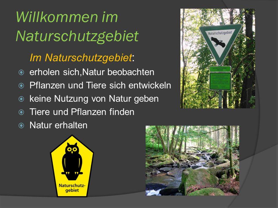 Willkommen im Naturschutzgebiet Im Naturschutzgebiet : erholen sich,Natur beobachten Pflanzen und Tiere sich entwickeln keine Nutzung von Natur geben Tiere und Pflanzen finden Natur erhalten