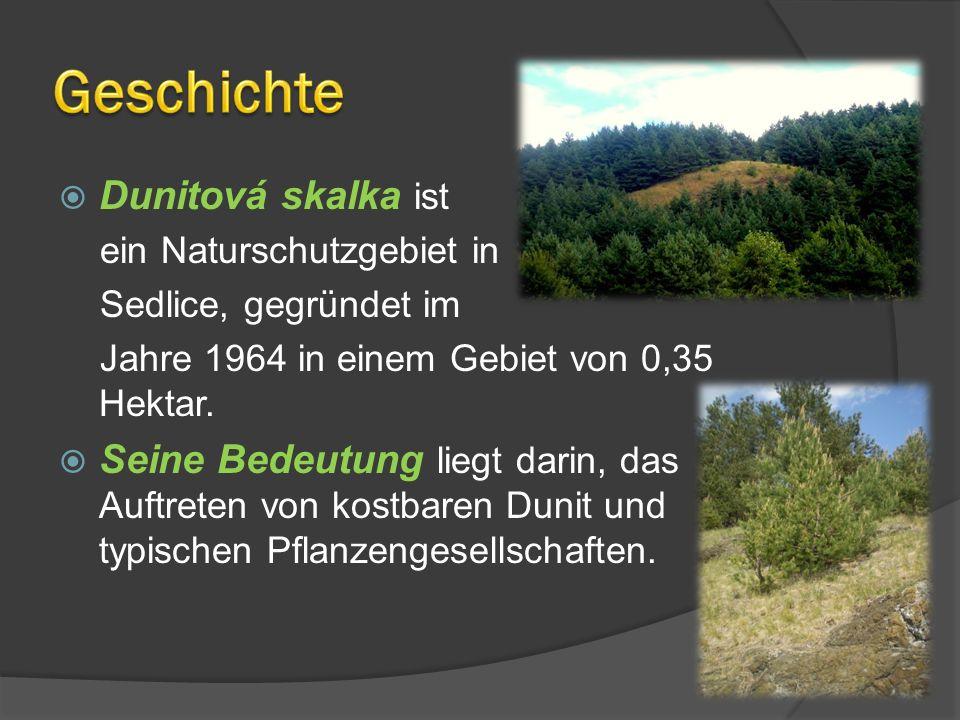 Dunitová skalka ist ein Naturschutzgebiet in Sedlice, gegründet im Jahre 1964 in einem Gebiet von 0,35 Hektar. Seine Bedeutung liegt darin, das Auftre