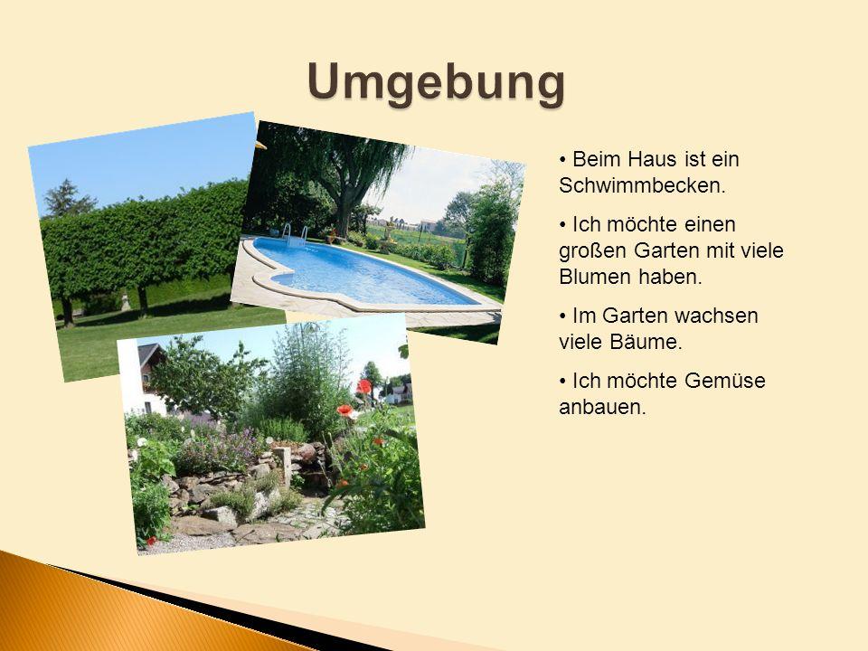 Beim Haus ist ein Schwimmbecken. Ich möchte einen großen Garten mit viele Blumen haben. Im Garten wachsen viele Bäume. Ich möchte Gemüse anbauen.