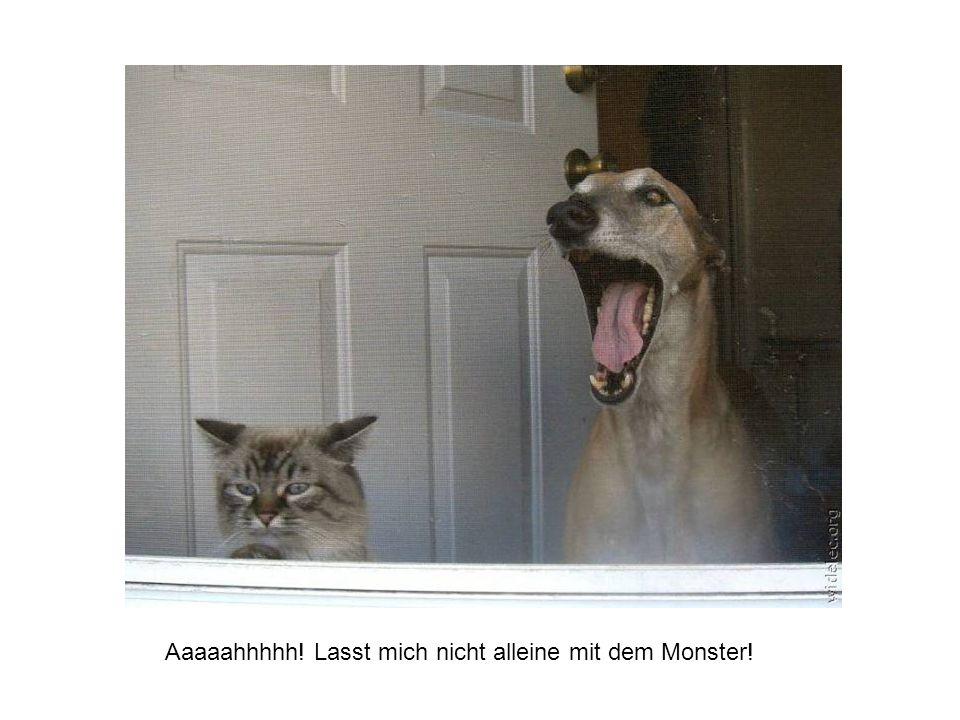 Aaaaahhhhh! Lasst mich nicht alleine mit dem Monster!