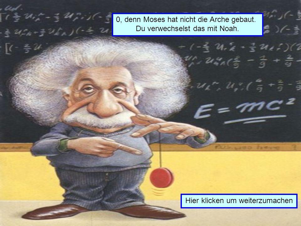 Wie viele Tiere von jedem Geschlecht nimmt Moses auf seiner Arche mit? 021