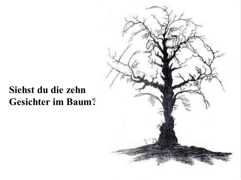 Siehst du die zehn Gesichter im Baum?