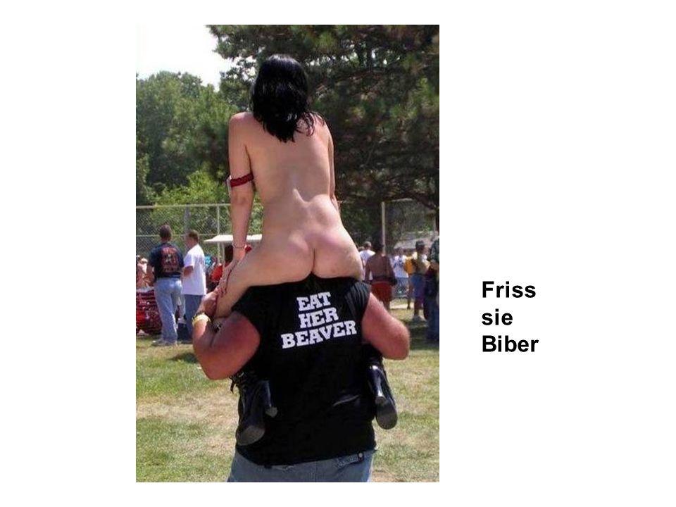 Friss sie Biber