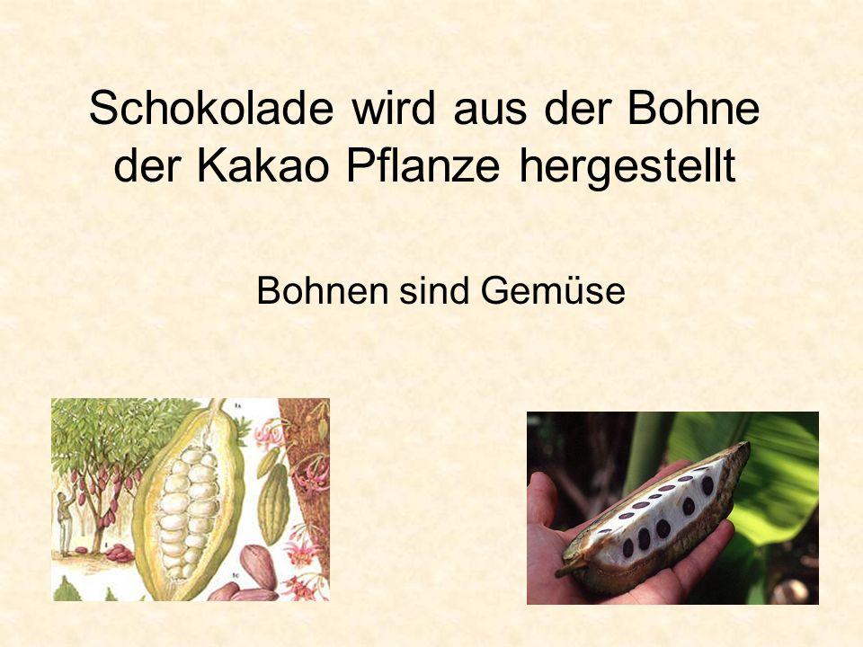 Schokolade wird aus der Bohne der Kakao Pflanze hergestellt Bohnen sind Gemüse
