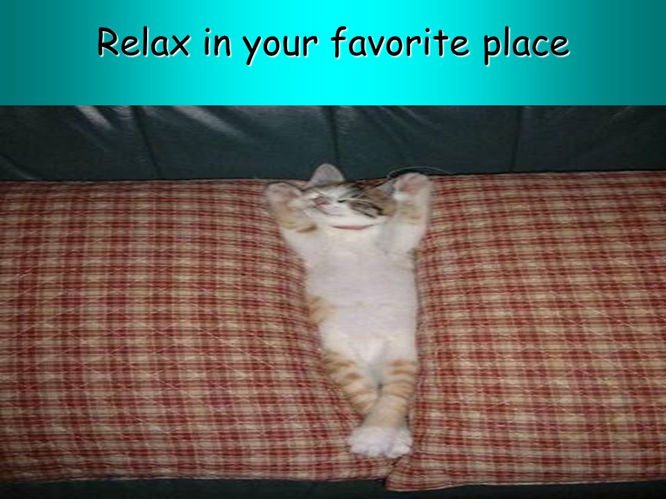 Relax in your favorite place